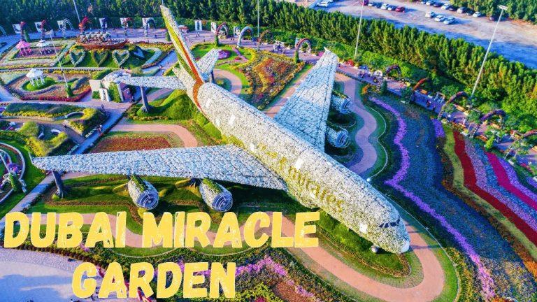 Plan Your Visit – Dubai Miracle Garden