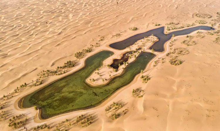 beautiful al qudra lake