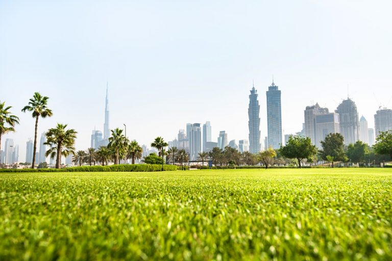 The Best Parks & Natural Attractions in Dubai